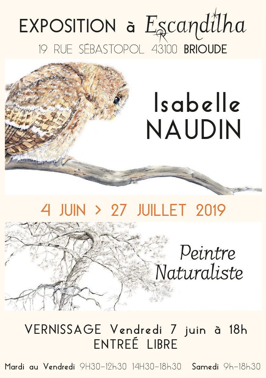 Expo : Isabelle Naudin