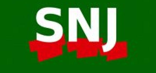 LogoSNJ-Site3-1.jpg