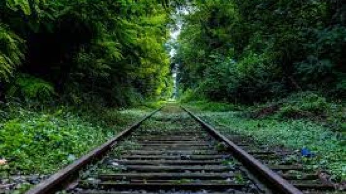 rails.jpeg